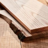 Ahec punta al rilancio della quercia rossa americana