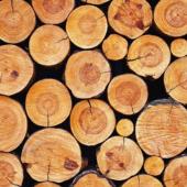 Mercato del legno: aumentano i prezzi